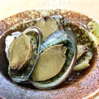 貝の写真・画像素材[532219]