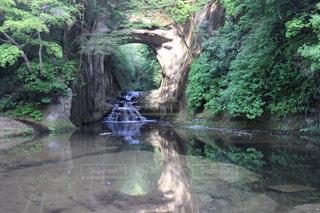 亀岩の洞窟の写真・画像素材[2251680]