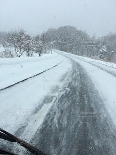 北海道の写真・画像素材[338494]