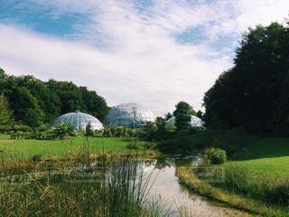 チューリッヒ植物園 - No.835371