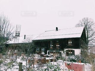 庭と雪の写真・画像素材[913149]