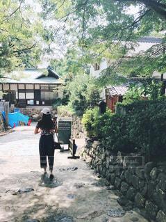 犬山城の写真・画像素材[1000506]