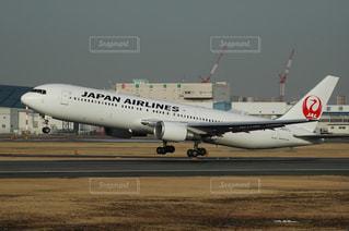 No.274249 JAL