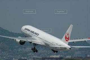 No.274250 JAL