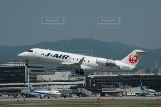 No.274251 JAL