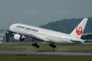 No.274252 JAL