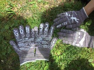 手袋の写真・画像素材[274288]