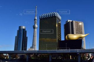 東京の写真・画像素材[279870]
