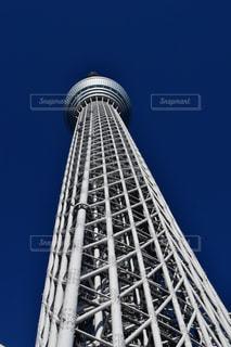 東京の写真・画像素材[279885]