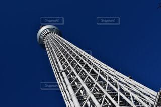 東京の写真・画像素材[279886]