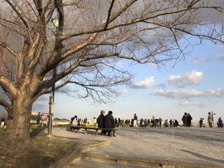公園の人々 のグループの写真・画像素材[1059978]