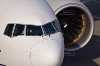 飛行機の写真・画像素材[1178959]