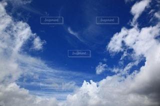 自然の写真・画像素材[4677]