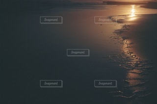 自然の写真・画像素材[4654]