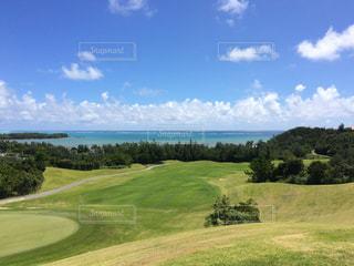 沖縄ゴルフ場 グリーンフィールドの写真・画像素材[1779637]