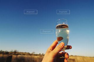 お酒の写真・画像素材[332098]