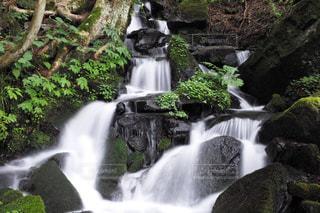 見玉不動尊の滝の写真・画像素材[2385512]