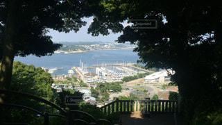 江ノ島からの景色の写真・画像素材[334342]