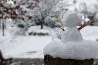 公園に佇む雪だるまの写真・画像素材[334348]