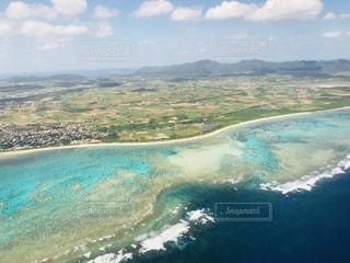 一面に広がるサンゴ礁の写真・画像素材[1204528]