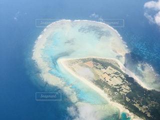 サンゴ礁の写真・画像素材[1204529]