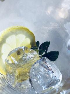 レモンのにーおいの写真・画像素材[1671471]