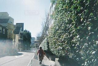 風景の写真・画像素材[4594]