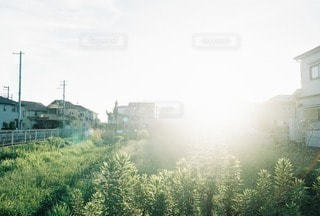 風景の写真・画像素材[4535]