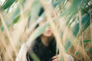 女性の写真・画像素材[280362]
