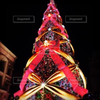 クリスマスの写真・画像素材[287685]