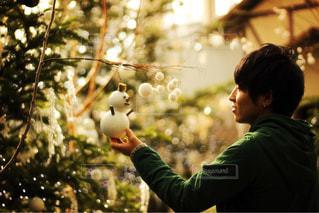 男性,1人,冬,雪,イルミネーション,クリスマス,雪だるま,ツリー