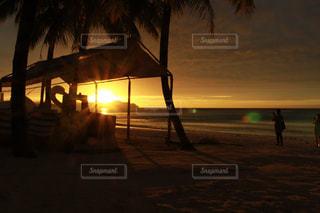 風景の写真・画像素材[282603]