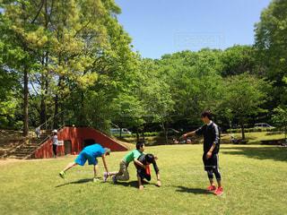 公園 - No.518279