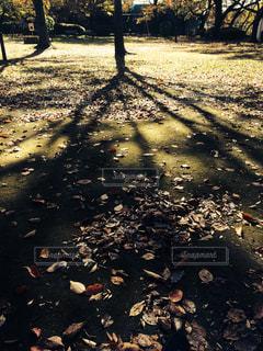 公園 - No.278918
