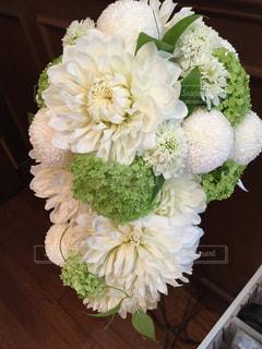 花の写真・画像素材[274784]