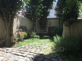 庭の小さな家の写真・画像素材[728544]