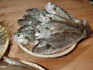 木製テーブルの上の魚の写真・画像素材[735804]