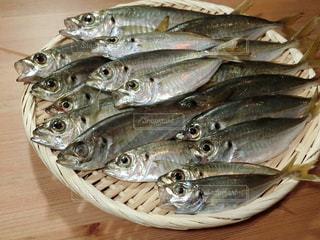 皿の上の魚の群れの写真・画像素材[735820]