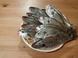 木製のテーブルの魚の写真・画像素材[735825]
