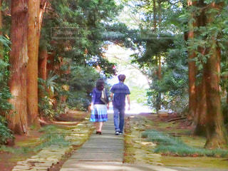 木の隣に立っている男の写真・画像素材[758878]