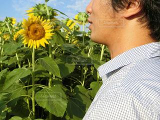 黄色の花を身に着けている男の写真・画像素材[761941]