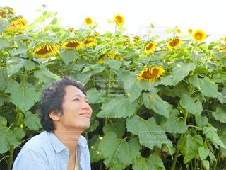 花の前に立っている男性の写真・画像素材[761995]