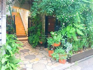 大きなレンガの緑豊かな庭園と建物の写真・画像素材[766959]
