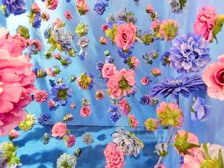 色とりどりの花の写真・画像素材[914993]