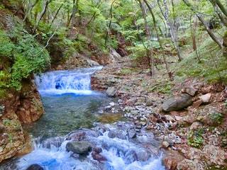 森の中の大きな滝 - No.935483