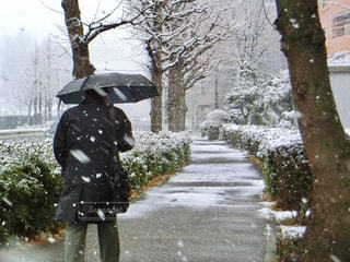 雪に覆われた通りの上を歩く男の写真・画像素材[971356]
