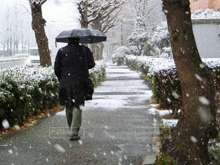 雪の覆われた道を歩いている男性 - No.971357