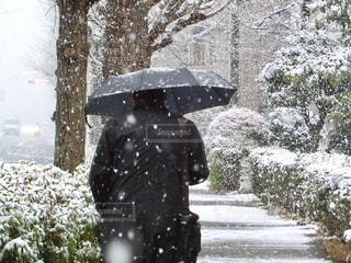 傘を持って雪の中歩く男性の写真・画像素材[971358]