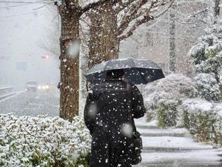 傘を持って雨の中を歩く男性の写真・画像素材[971359]