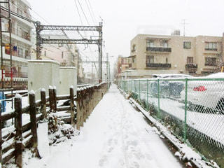 雪に覆われた建物の写真・画像素材[971404]